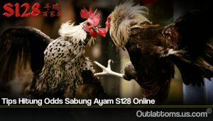 Tips Hitung Odds Sabung Ayam S128 Online